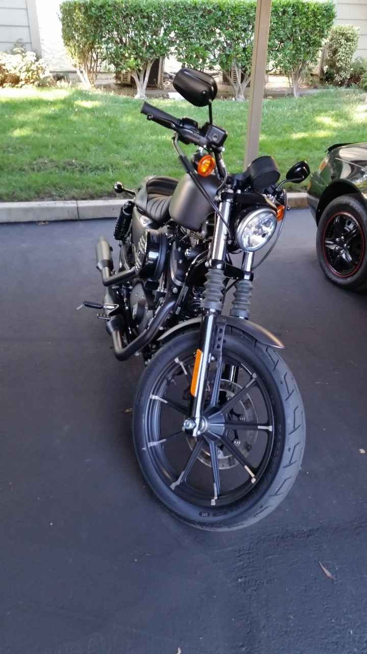 Used 2016 Harley-Davidson SPORTSTER 883 IRON Motorcycles For Sale in California,CA. 2016 Harley Iron 883. Beautiful bike. Clean low milage. Like new. Stock.