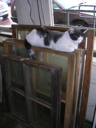 This website has a lot of ideas of things to do with old windows and doors. Purty cute!