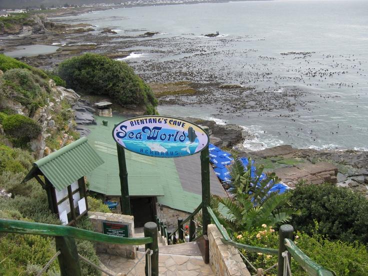 Bintang's Cave Restaurant. Hermanus. South Africa.  Amazing!