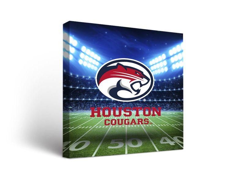 Houston Cougars Football Stadium Canvas Art Square
