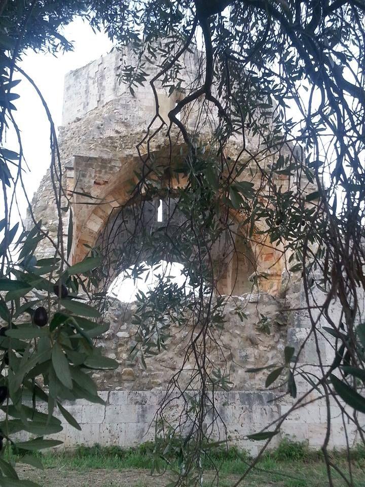 Chiesa di San Bruzio - #MaglianoinToscana