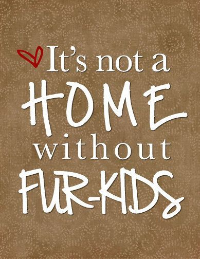 It's not a home without Fur-Kids. - Anonymous    http://collectmypet.ie/