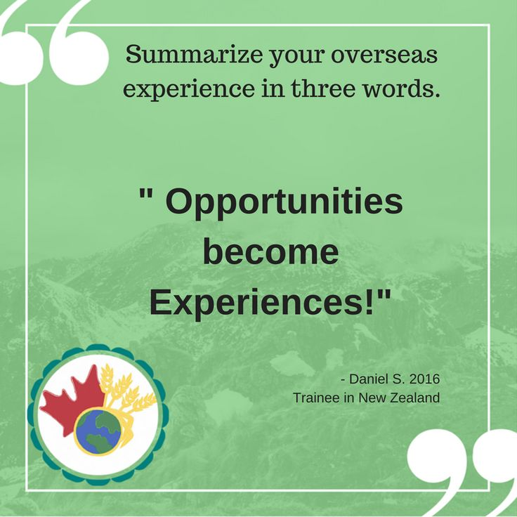 What a Trainee had to say about his NZ experience!