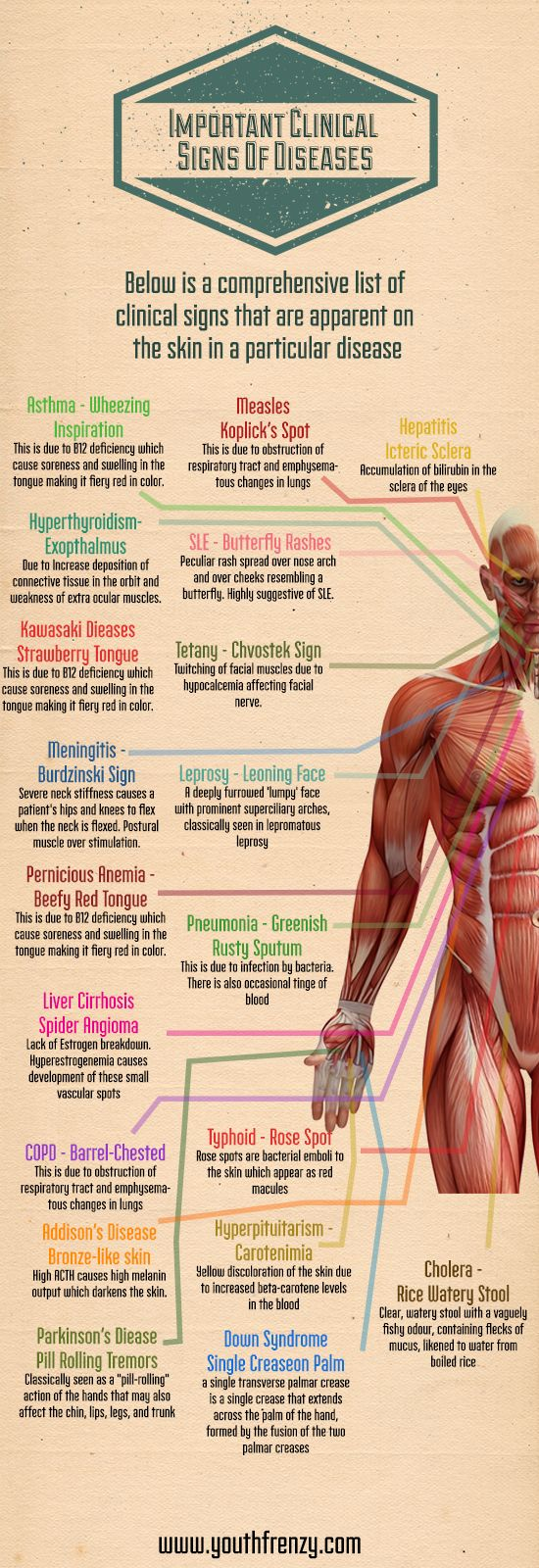 clinical signs of diseases apparent on skin surface.