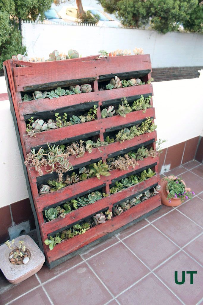 Another brilliant use for an old pallet: vertical planter!