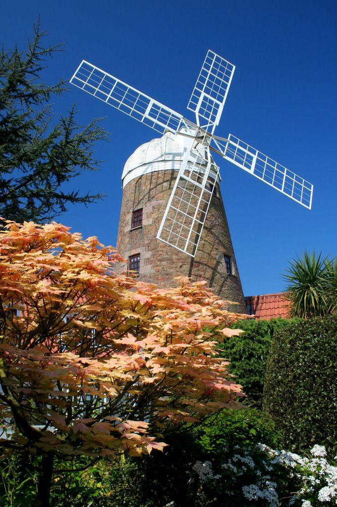 M s de 25 ideas incre bles sobre molinos de viento en for Molinos de viento para jardin