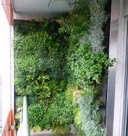 mur végétalisé intérieur comment le créer - Marie Claire Maison