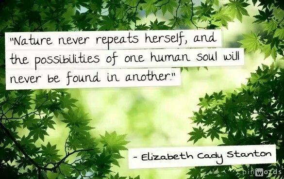 Elizabeth Cady Stanton We Are Original