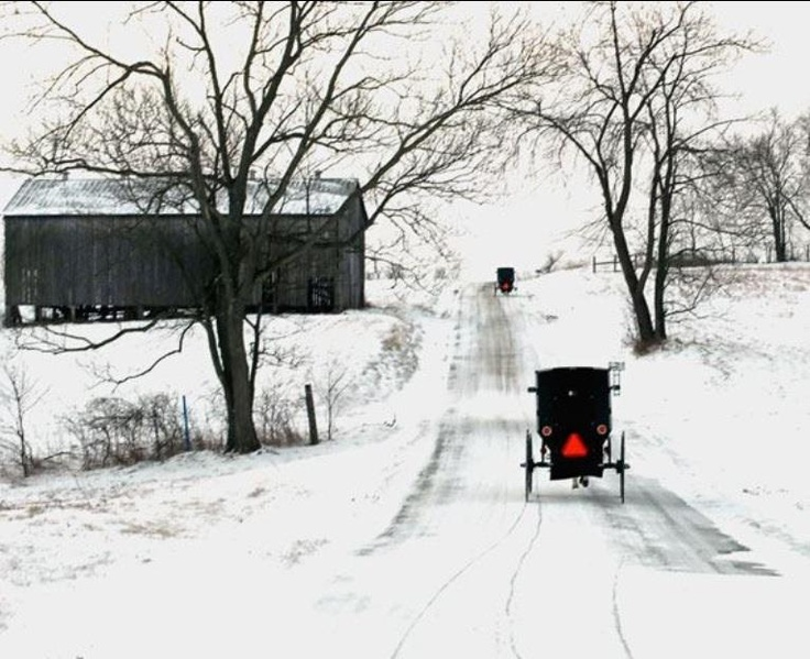 Amish Country - I'm sure it's a safe assumption to say those buggies do not have heated seats :)