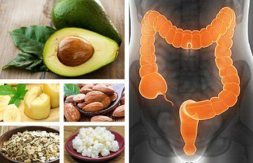 Découvrez les meilleurs aliments pour traiter le syndrome du côlon irritable, ainsi que de nombreux conseils pour en finir avec ce problème.