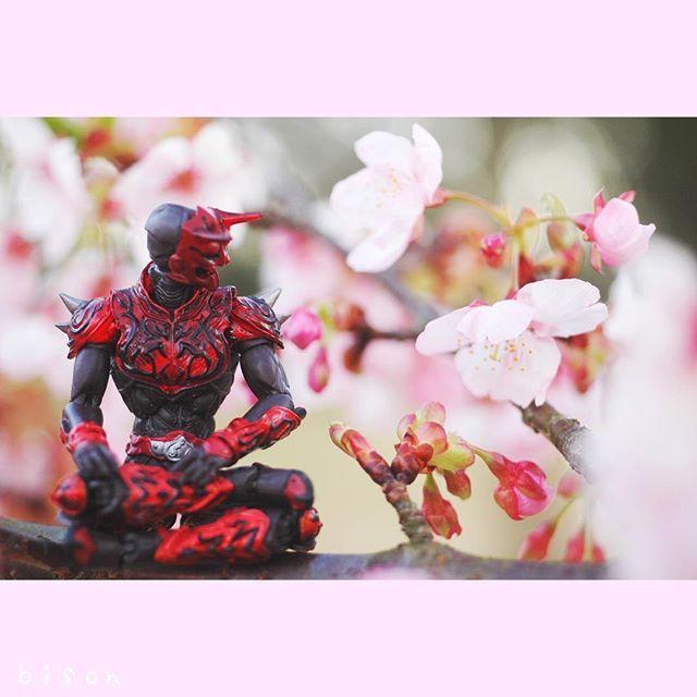 【bison1.82m】さんのInstagramをピンしています。 《sakura  今年も伊東小室桜がキレイ‼️ 鬼も見惚れてしまうな🌸✨✨✨ #桜#サクラ#🌸#cherryblossoms#ファインダー越しの私の世界#photography#撮影#nikon#igers#igersjp#日本#Japan#静岡#shizuoka#鬼#モモタロス#Flower》