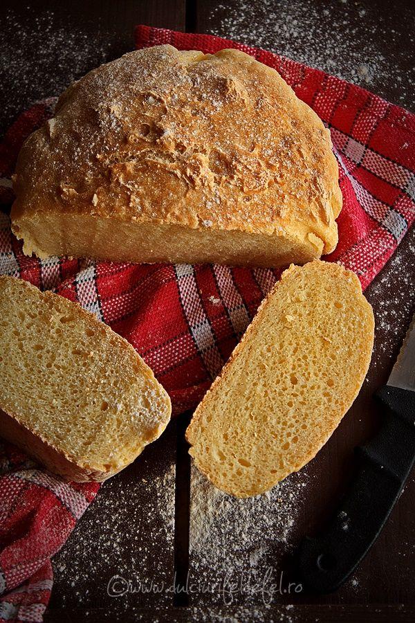 Mod de preparare Paine fara framantare (fara gluten): Faina se cerne si se amesteca intr-un castron cu sarea, zaharul si drojdia uscata. Se face o gropita in