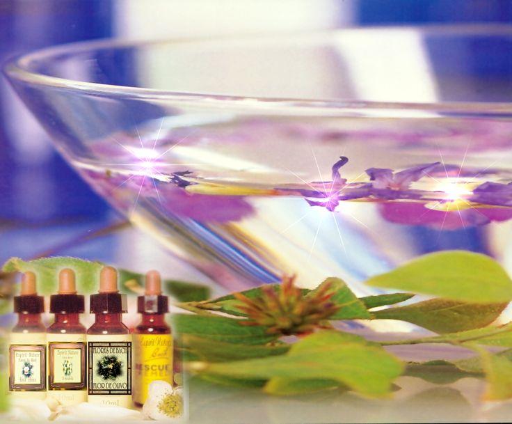 Terapias alternativas: Flores de Bach