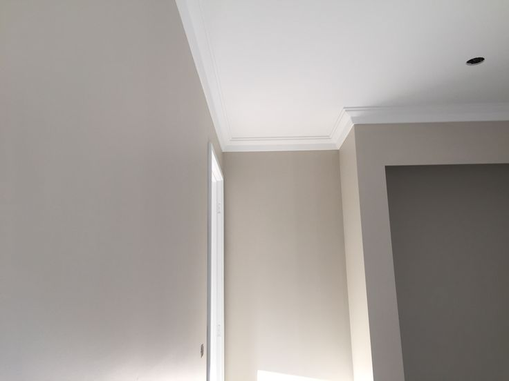 Dulux White Duck main wall colour and Gyprock Alto cornice
