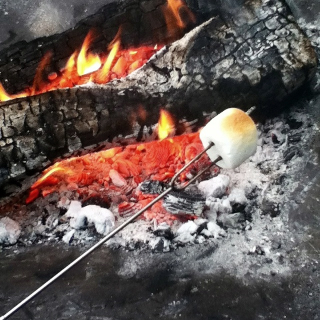 The fun part of summer... Roasting marshmallows!: Roastin Marshmallows, Summer, Roasted Marshmallows, Roasting Marshmallows, Hospitals