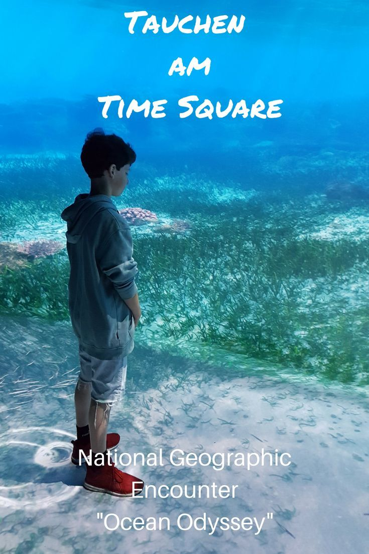 New York: National Geographic Encounter Ocean Odyssey – Abtauchen am Time Square