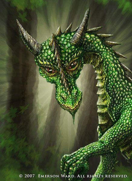 The dragon of the mountain pines was as green as her domain and her piecing eyes could spot the tiniest of intruders. EDK                              http://fc06.deviantart.nt/fs17/f/2007/143/e/2/Cute_Green_Dragon_by_Wardem.jpg