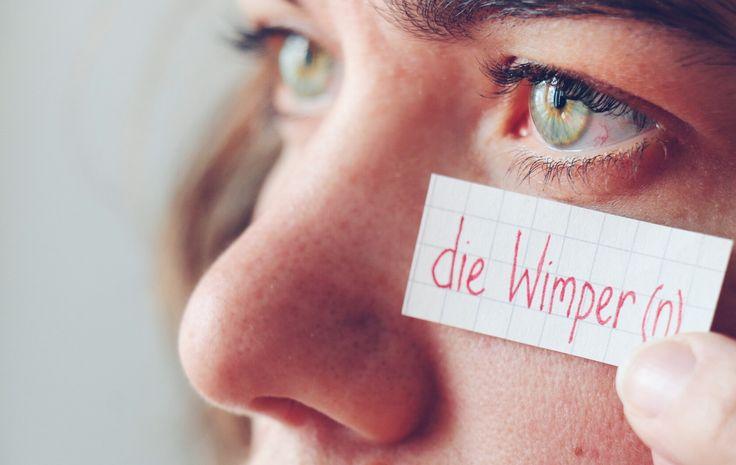 die Wimper - eyelash