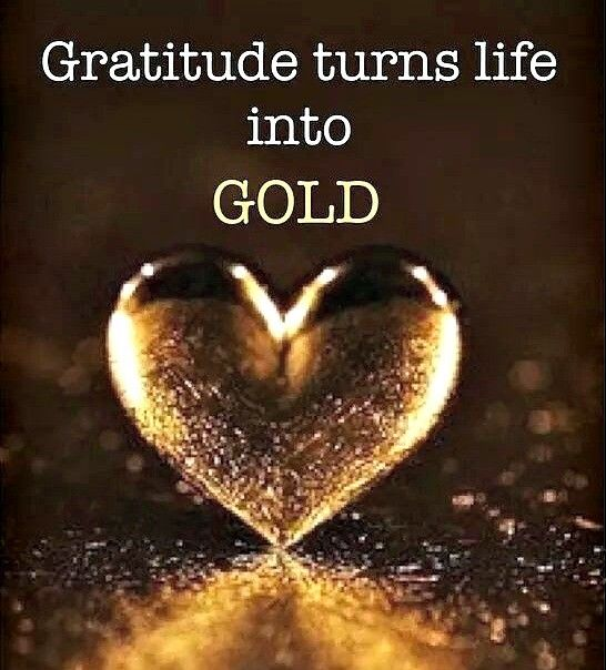 Be grateful, even in the little things., and the ups and downs of my life. …                                                                                                                                                                                 More