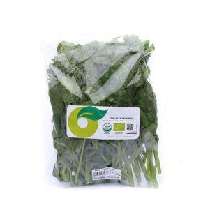 Organic Malabar Spinach +- 500 gram - 38,500 vnd