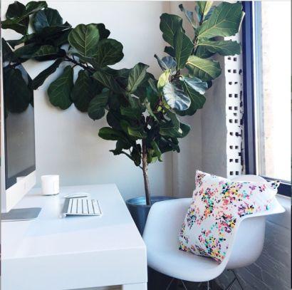 Caitlin Wilson British Bouquet Pillow |#shareyourcwt