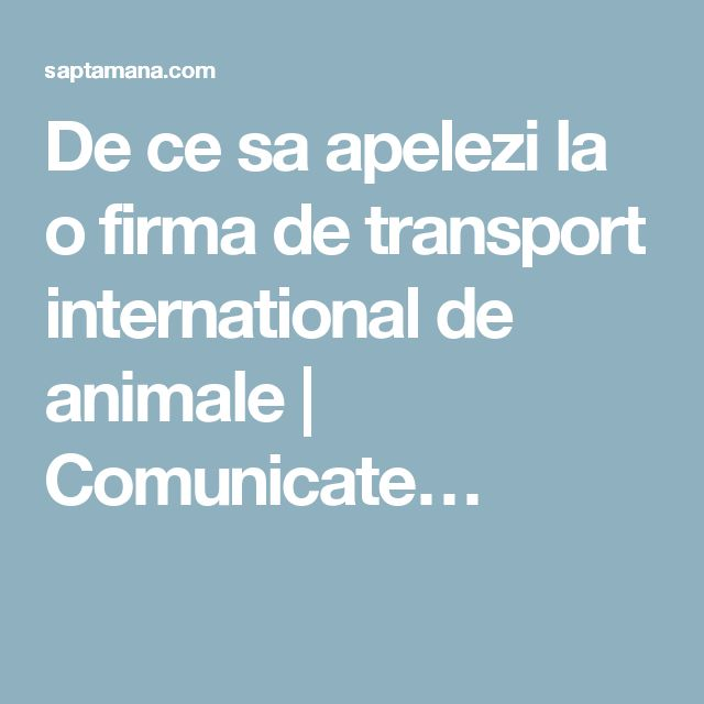 De ce sa apelezi la o firma de transport international de animale | Comunicate…