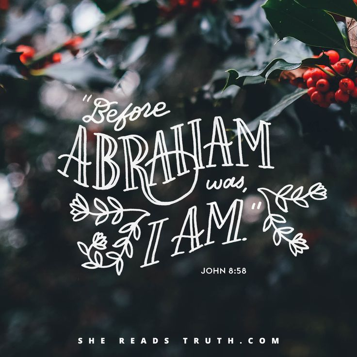 God's Covenant With Abram - Day 3 of the Advent: Joy to the World from She Reads Truth.