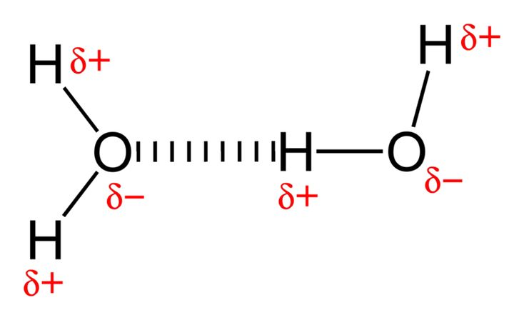 hydrogen bonding strongest fon chemistry diagrams pinterest : hydrogen bonding diagram - findchart.co