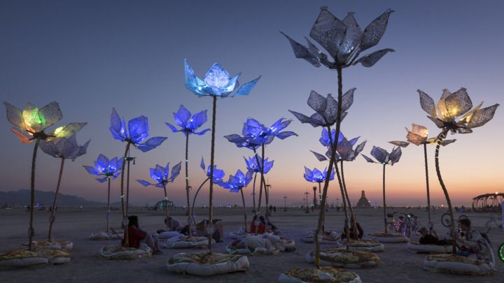 Flower Power Photo - Burning Man 2014's Trippiest Photos | Rolling Stone