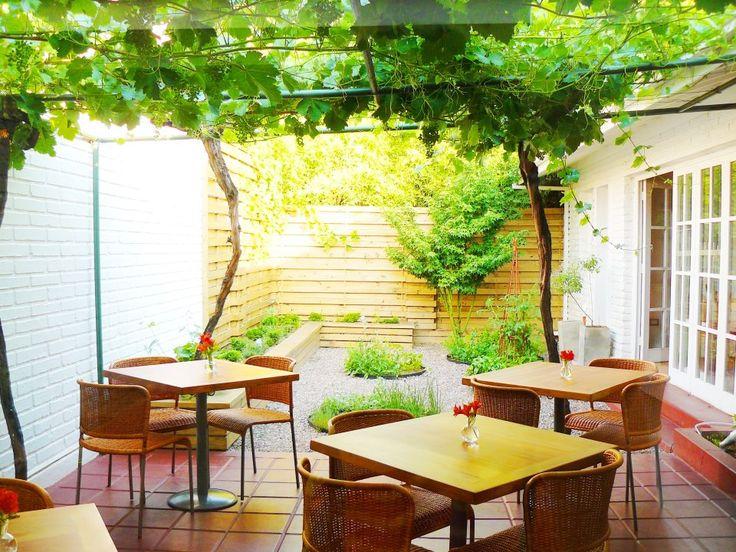 Quinoa Restaurante | Comer | Saliendo.com - Los mejores panoramas para Salir