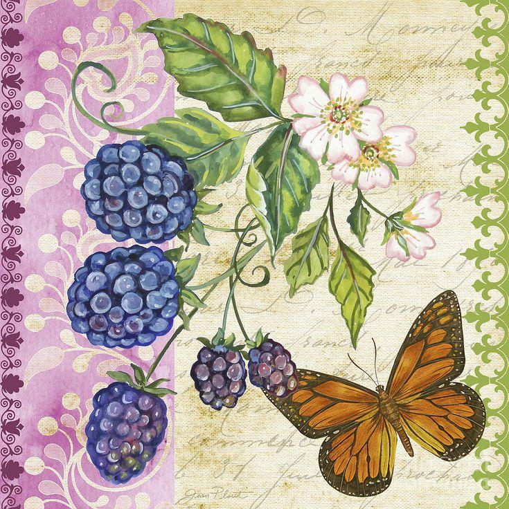 Vintage Fruit-blackberries Painting