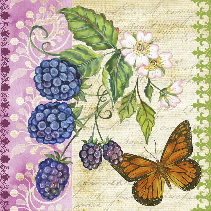 Vintage Fruit-blackberries Painting