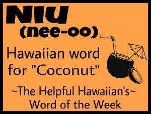 The Helpful Hawaiian's Word of the Week: Niu