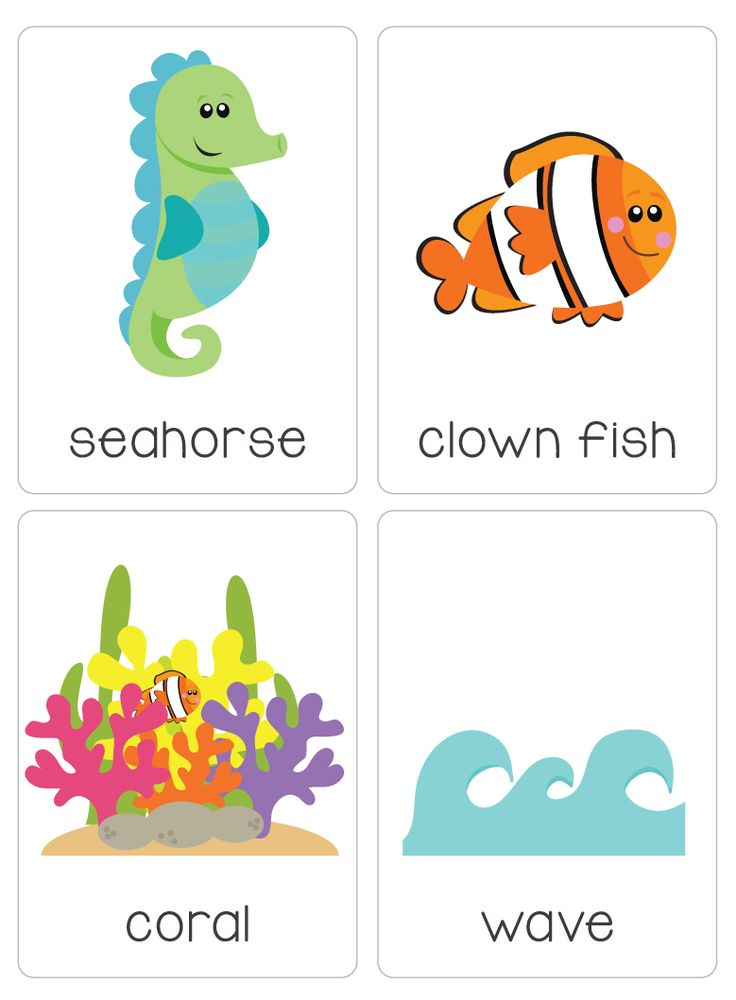 "Our set of printable ""Under the Ocean Flash Cards"" are a great learning tool for early literacy. All brightly coloured and of high quality. There are 19 brightly coloured, high quality printable flash cards in this pack."
