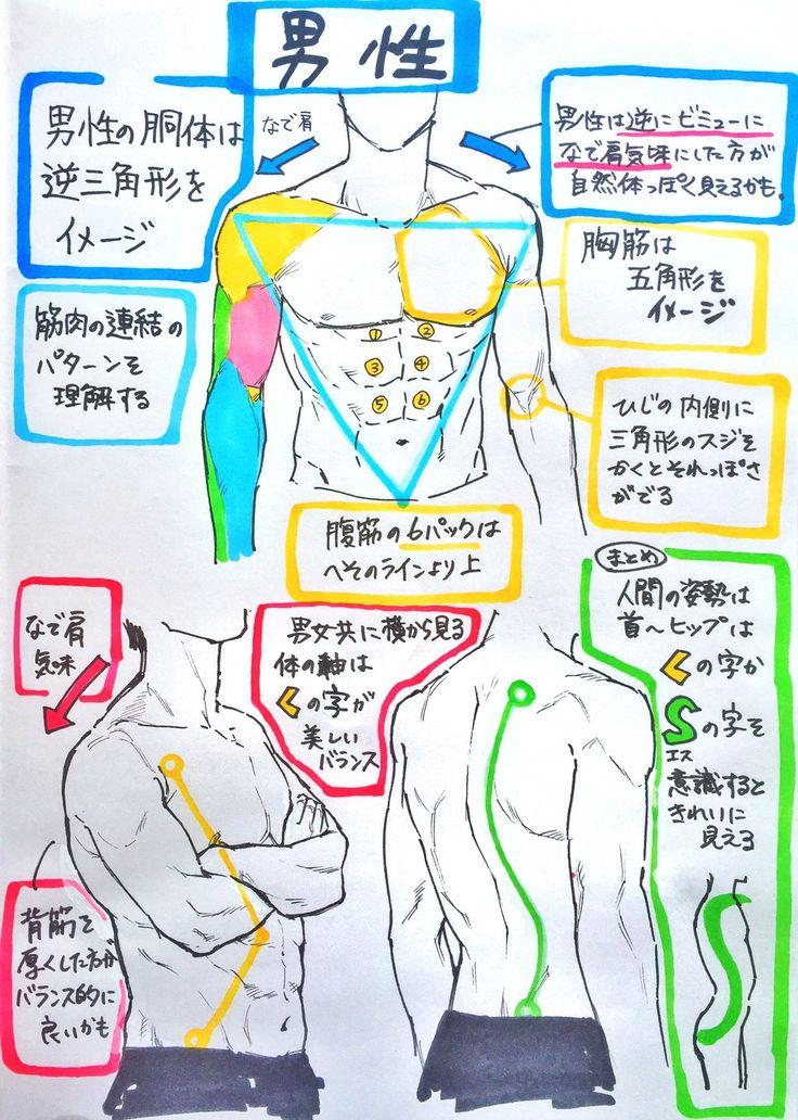 プロによる『ここだけ注意すれば下手には見えない男性と女性の身体の描き方』がとても参考になる「困ったらすぐ見たい」 - Togetterまとめ
