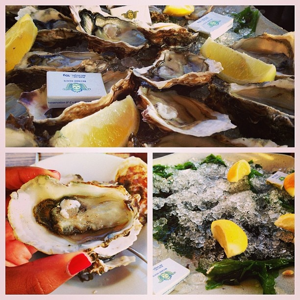 Enjoying oysters in Bouzigues, Languedoc, #France #seafood #travel