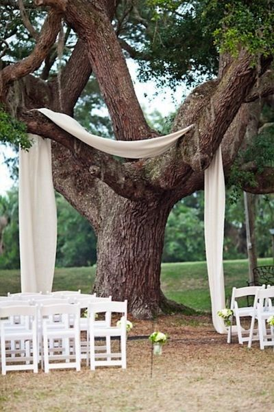A simple piece of white fabric draped over a tree creates an elegant setting for an outdoor wedding ceremony.