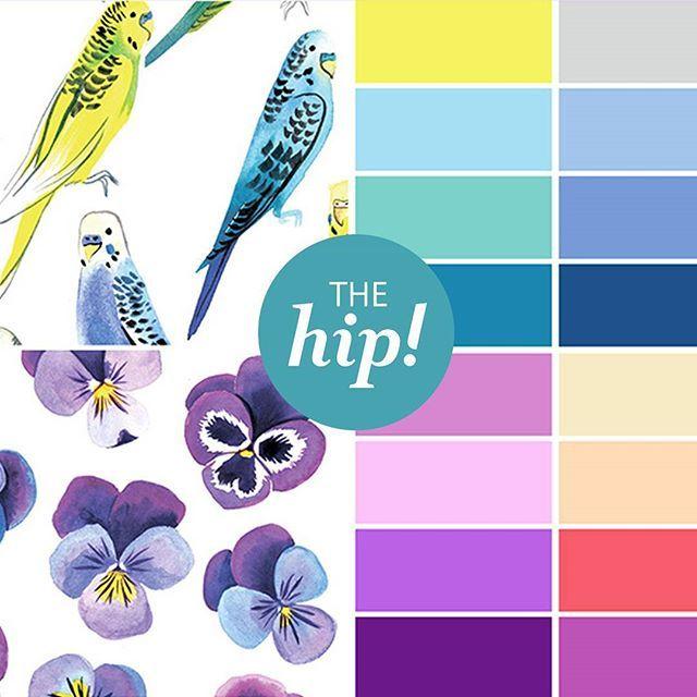 Дорогие друзья❤ Мы готовим для вас новую интересную коллекцию!  Что же это будет? А это будут новые стильные и модные сейчас акварельные принты с попугайчиками и цветами. Свежие нежные пастельные цвета в тренде нового сезона, но с яркими и сочными акцентами.  Цветовая гамма от нежно-салатовых, голубых и нежно-сиреневых до ярко-фиолетовых оттенков. А так же универсильные приглушенные сине-серые и бежевые цвета. Слипы, боди, штанишки, летние шапочки, песочники для малышей и платья, свитшоты…