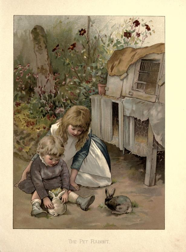 Darling Victorian Rabbits and Bunnies From Children's Books