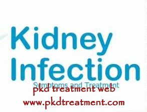 As is known to us, PKD is a very troublesome and tough disease, and can not be cured yet now. In addition, kidney cyst infection can happen on patients with PKD, causing kidney infection in the end. This time we will mostly talk about kidney infection in PKD for you.