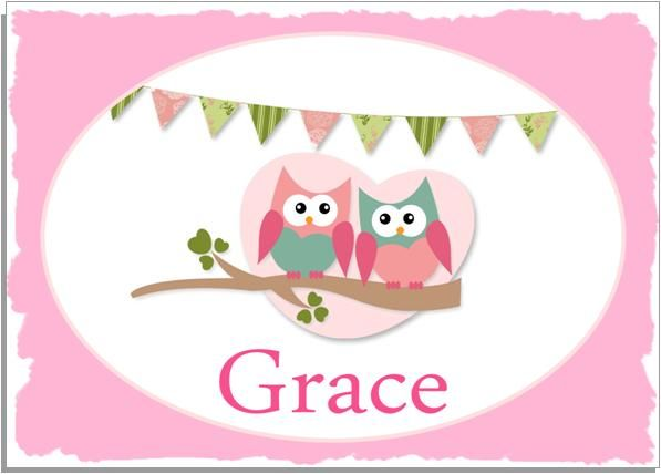 Personalised Placemat A4 Cute Hoots Pink Border Owls Bunting BY ...