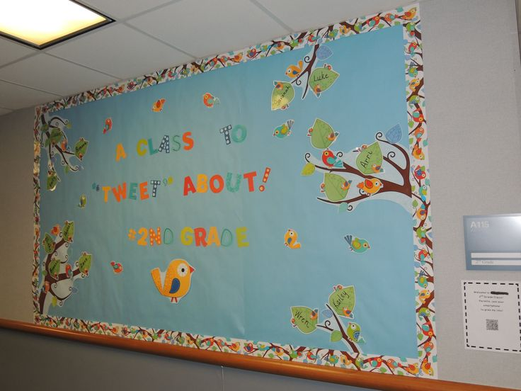 Classroom Ideas With Birds : Best images about classroom theme birds  on
