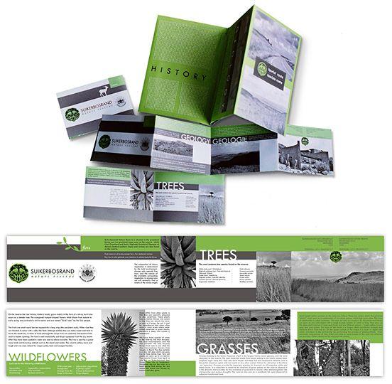30 Best Brochure Designs for Your Inspiration | The Design Inspiration