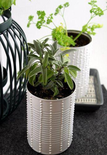 #DIY Tin Can Planter!