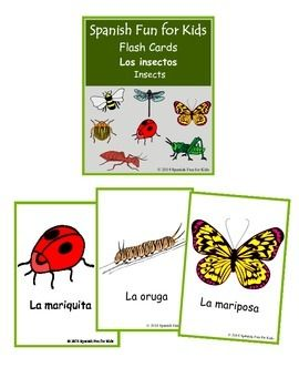 Flash cards los insectos (insects) are a set of 16 cards that teaches the Spanish name of different insects. It is very useful for learning new words in Spanish by category.