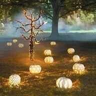 Fall pumpkin path..