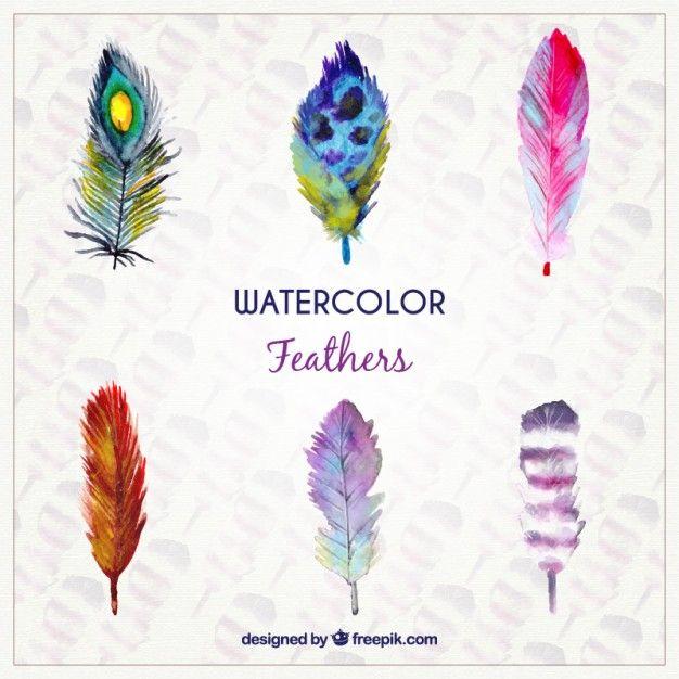 Aquarell Federn in farbigen Stil Kostenlose Vektoren