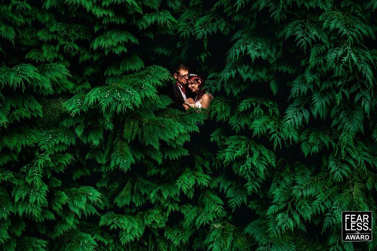 Two new Wedding Photography Awards � Fearless Photographers