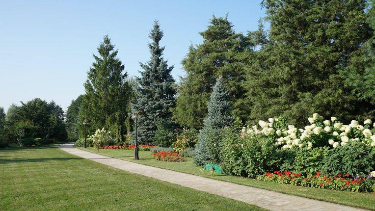 Для заказчицы этого ландшафтного проекта было важно, чтобы в саду присутствовали сезонно цветущие растения, наполняющие пространство красками и ароматами.