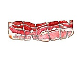 Bacon is the Word watercolor print